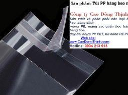 Túi PE-PP có nắp băng keo
